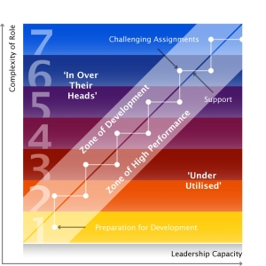 Developing Leadership Capacity in the Workplace